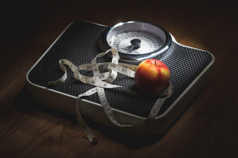 Früchte für die ketogene Ernährung angezeigt